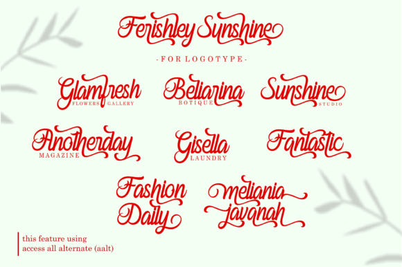 Print on Demand: Ferishley Sunshine Script & Handwritten Font By Holydie Studio - Image 4