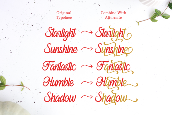 Print on Demand: Ferishley Sunshine Script & Handwritten Font By Holydie Studio - Image 5