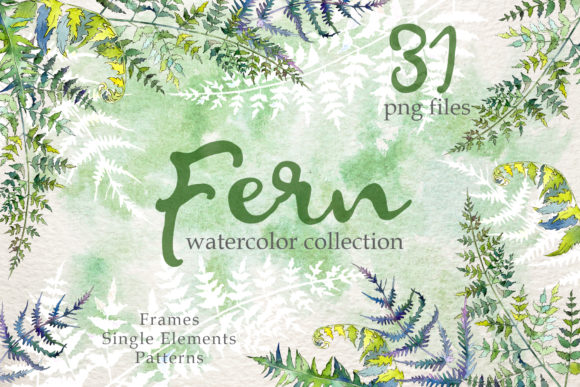 Print on Demand: Fern Watercolor Graphic Illustrations By MyStocks
