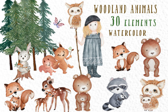 Forest Friends Cute Woodland Animals Graphic Illustrations By vivastarkids