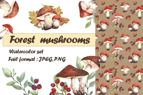 Forest Mushrooms Watercolor Set Graphic Illustrations By Mari_artchef
