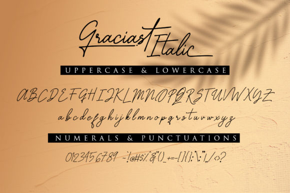Print on Demand: Graciast Script & Handwritten Font By dmletter31 - Image 11