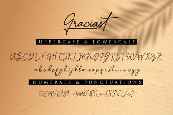 Print on Demand: Graciast Script & Handwritten Font By dmletter31 - Image 9