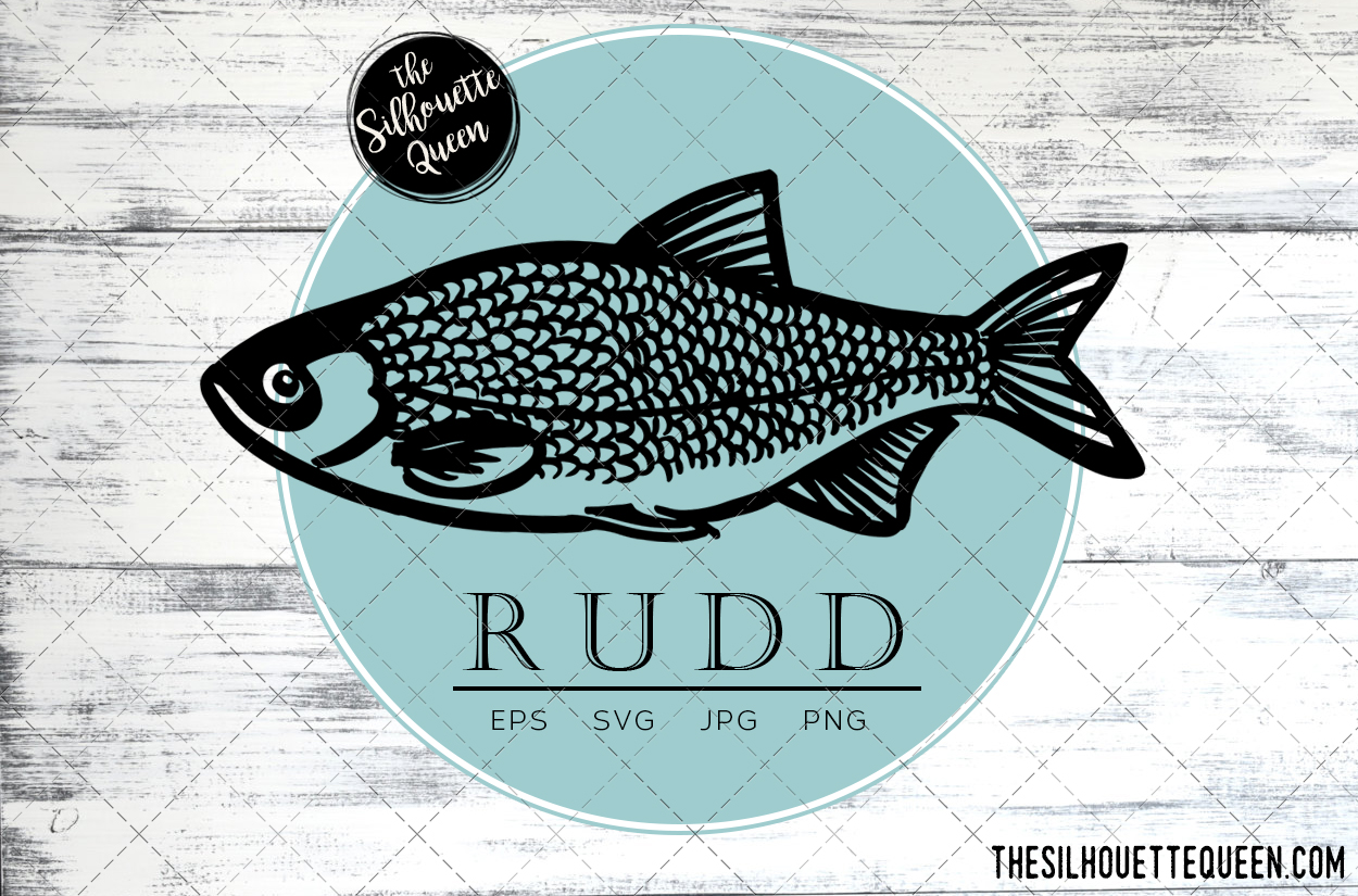 Download Free Hand Drawn Sketched Rudd Fish Vector Grafico Por for Cricut Explore, Silhouette and other cutting machines.
