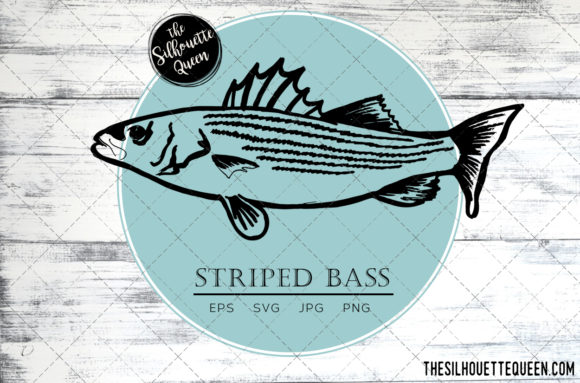 Download Free Hand Drawn Sketched Striped Bass Fish Graphic By for Cricut Explore, Silhouette and other cutting machines.