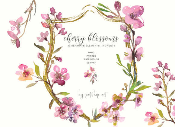 Hand Painted Watercolor Cherry Blossoms Graphic Illustrations By Patishop Art
