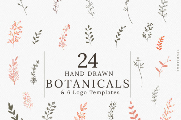 Print on Demand: Hand-drawn Botanical Illustrations Graphic Illustrations By 3Motional