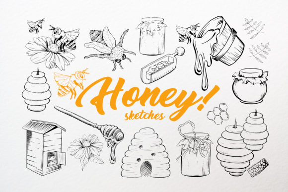 Honey Sketches Vector Drawings Graphic Illustrations By ilonitta.r
