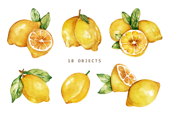 Print on Demand: Lemonade Watercolor Set Graphic Illustrations By Typia Nesia - Image 6