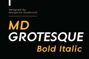 MD Grotesque Bold Italic Font By Margarita Dyakovich