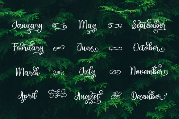Print on Demand: Migdale Script & Handwritten Font By Bexx Type - Image 13