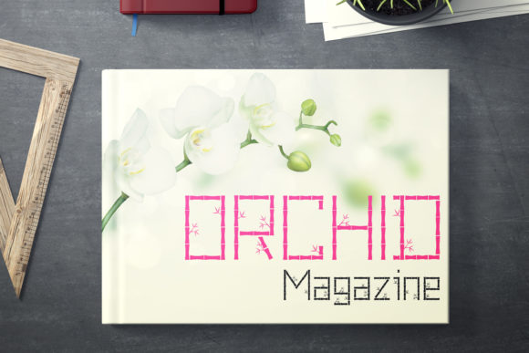 Print on Demand: Pring Decorative Font By da_only_aan - Image 3