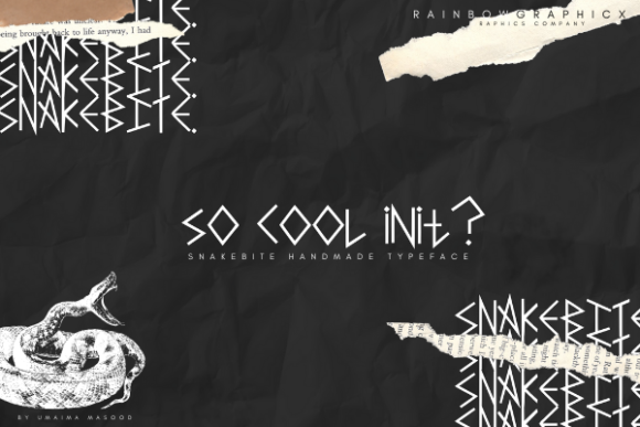 Snakebite Font By RainbowGraphicx  Image 2