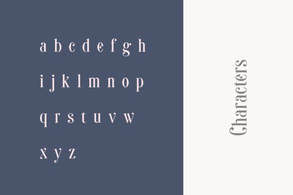 Print on Demand: Sonia Serif Font By HansCo - Image 10