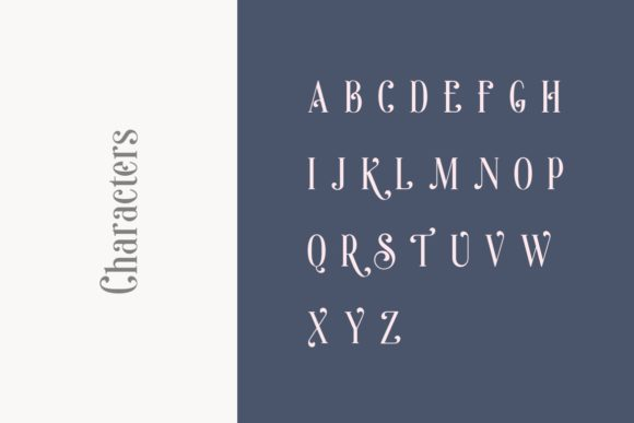 Print on Demand: Sonia Serif Font By HansCo - Image 11