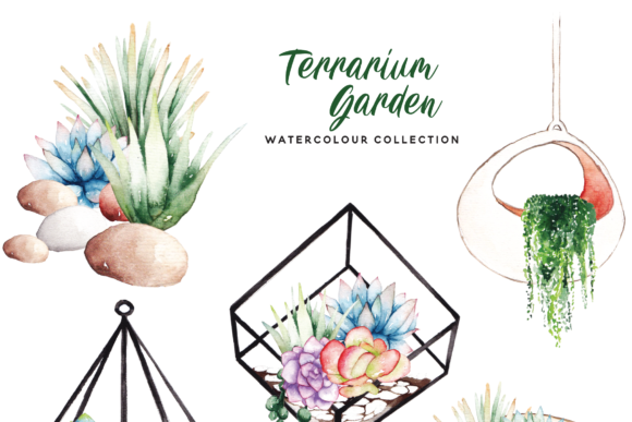 Print on Demand: Succulent Terrarium Watercolor Graphic Illustrations By Typia Nesia - Image 3