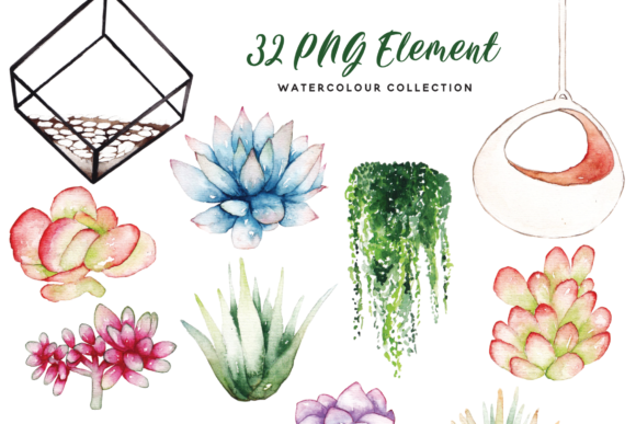 Print on Demand: Succulent Terrarium Watercolor Graphic Illustrations By Typia Nesia - Image 4