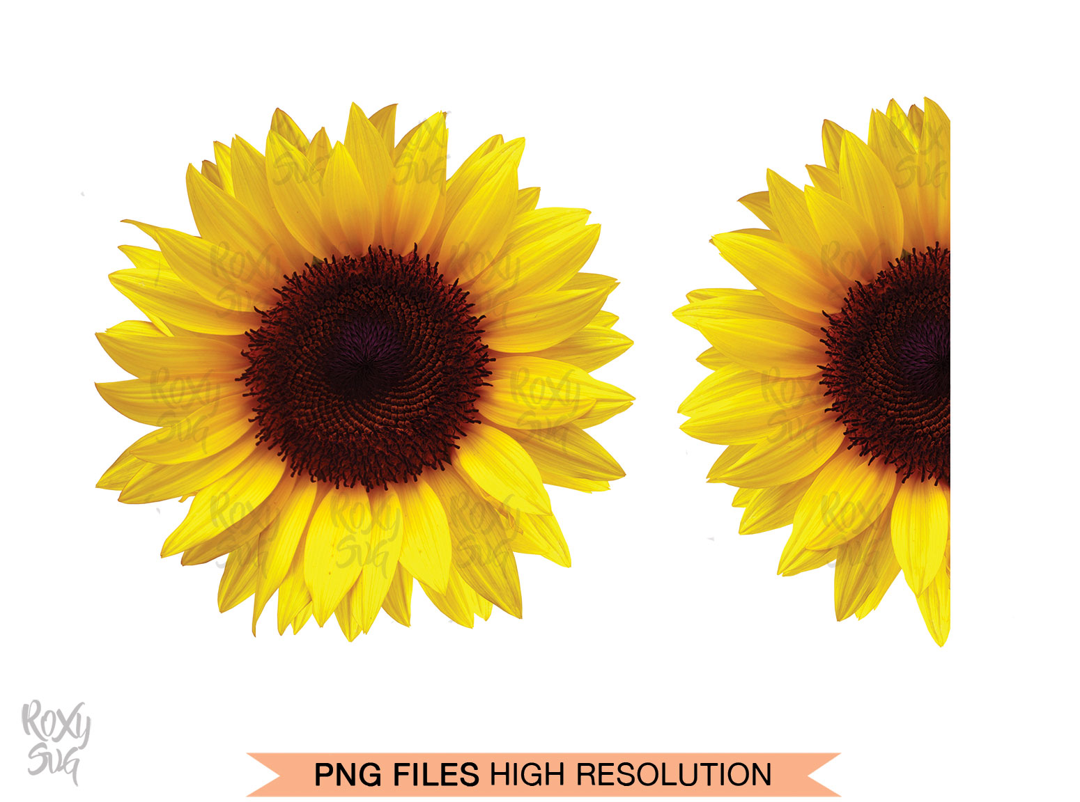 Sunflower Clipart (Graphic) by roxysvg26 · Creative Fabrica