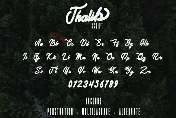 Print on Demand: Thalib Script & Handwritten Font By Arendxstudio - Image 5