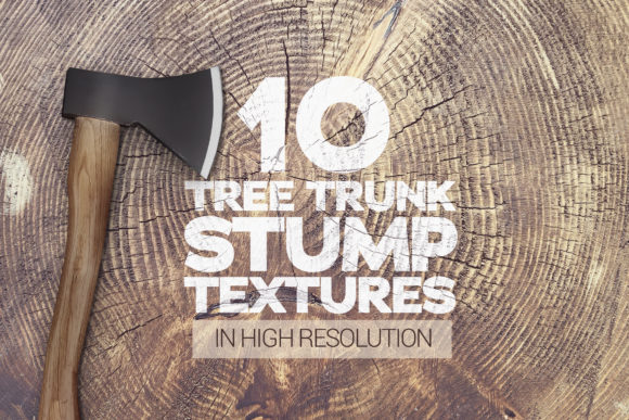 Tree Trunk Stump Textures X10 Graphic Textures By SmartDesigns - Image 1