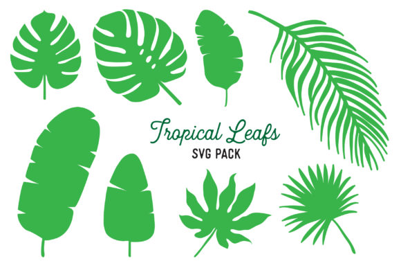 Download Free Tropical Leaf Vector Design Bundle Graphic By The Gradient Fox for Cricut Explore, Silhouette and other cutting machines.