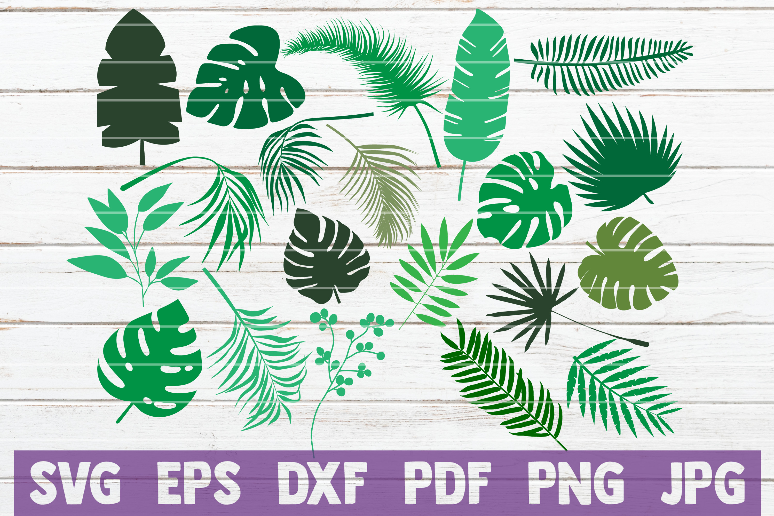 Download Free Tropical Leaves Bundle Cut Files Graphic By Mintymarshmallows for Cricut Explore, Silhouette and other cutting machines.