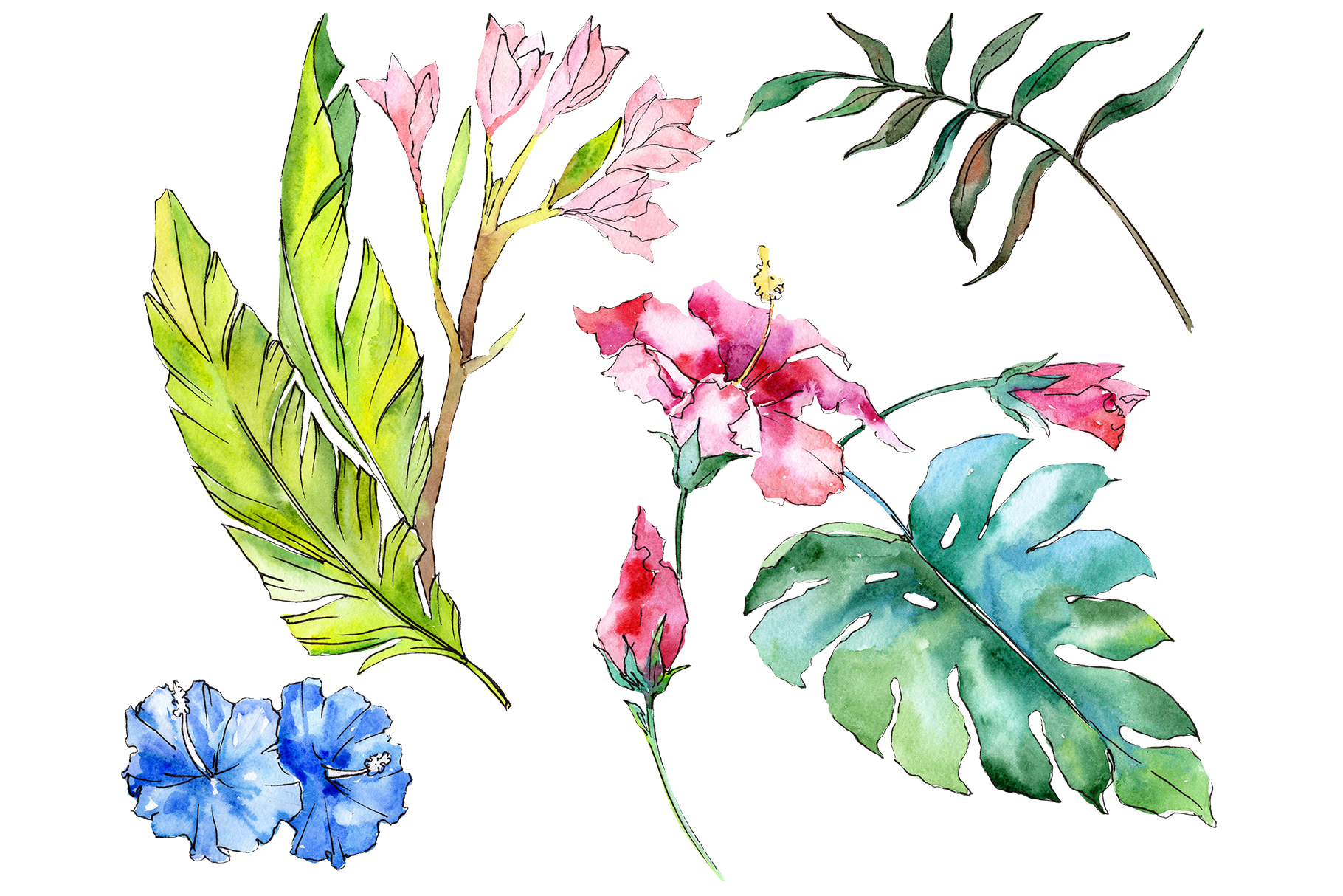 Tropical Plants Watercolor Graphic By Mystocks Creative Fabrica