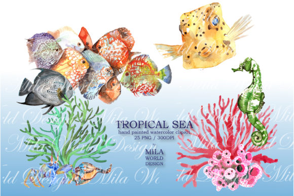 Tropical Sea Watercolor Clip Art Graphic Illustrations By MilaWorldDesing - Image 2