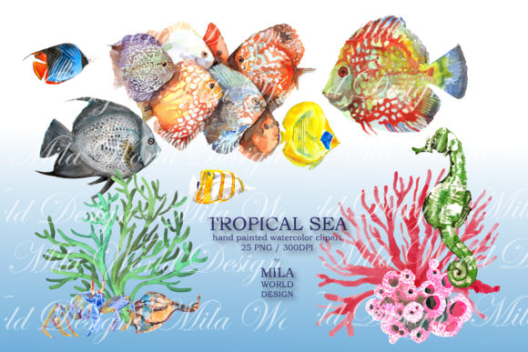 Tropical Sea Watercolor Clip Art Graphic Illustrations By MilaWorldDesing - Image 3