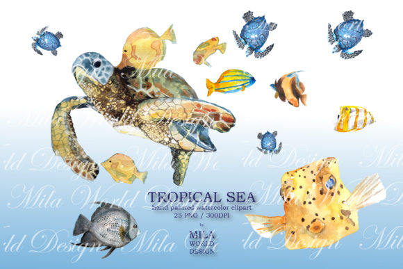 Tropical Sea Watercolor Clip Art Graphic Illustrations By MilaWorldDesing - Image 5