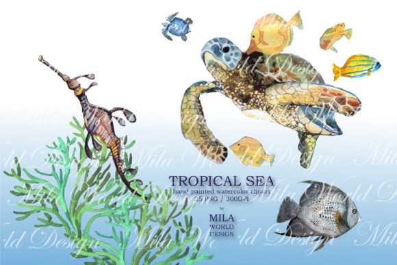 Tropical Sea Watercolor Clip Art Graphic Illustrations By MilaWorldDesing - Image 6