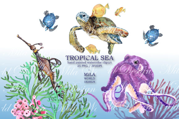 Tropical Sea Watercolor Clip Art Graphic Illustrations By MilaWorldDesing - Image 7