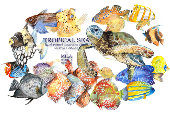 Tropical Sea Watercolor Clip Art Graphic Illustrations By MilaWorldDesing - Image 8