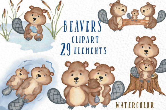 Watercolor Animals  Beaver Graphic Illustrations By vivastarkids