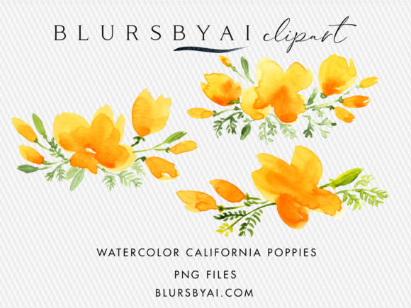 Download Free Watercolor California Poppies Clipart Graphic By Blursbyai for Cricut Explore, Silhouette and other cutting machines.