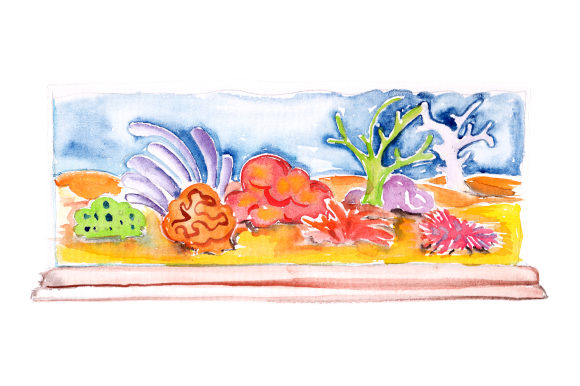 Download Free Watercolor Fish Tank With Reef Decoration Svg Cut File By for Cricut Explore, Silhouette and other cutting machines.