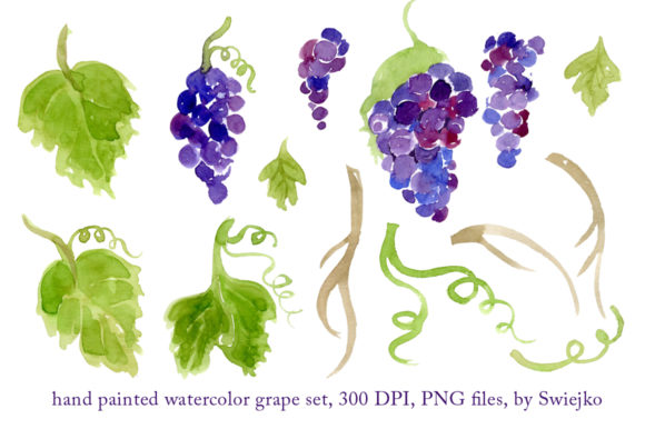 Print on Demand: Watercolor Grapes, Hand Painted Graphic Illustrations By swiejko