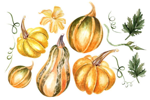 Watercolor Sunflower & Pumpkins Graphic Objects By Knopazyzy - Image 3