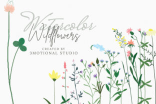 Print on Demand: Watercolor Wildflowers High Res Graphic Illustrations By 3Motional