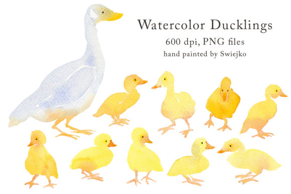 Print on Demand: Watercolor Duck with Ducklings, Country Graphic Illustrations By swiejko