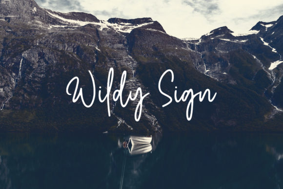 Print on Demand: Wildy Sign Script & Handwritten Font By Dikas Studio