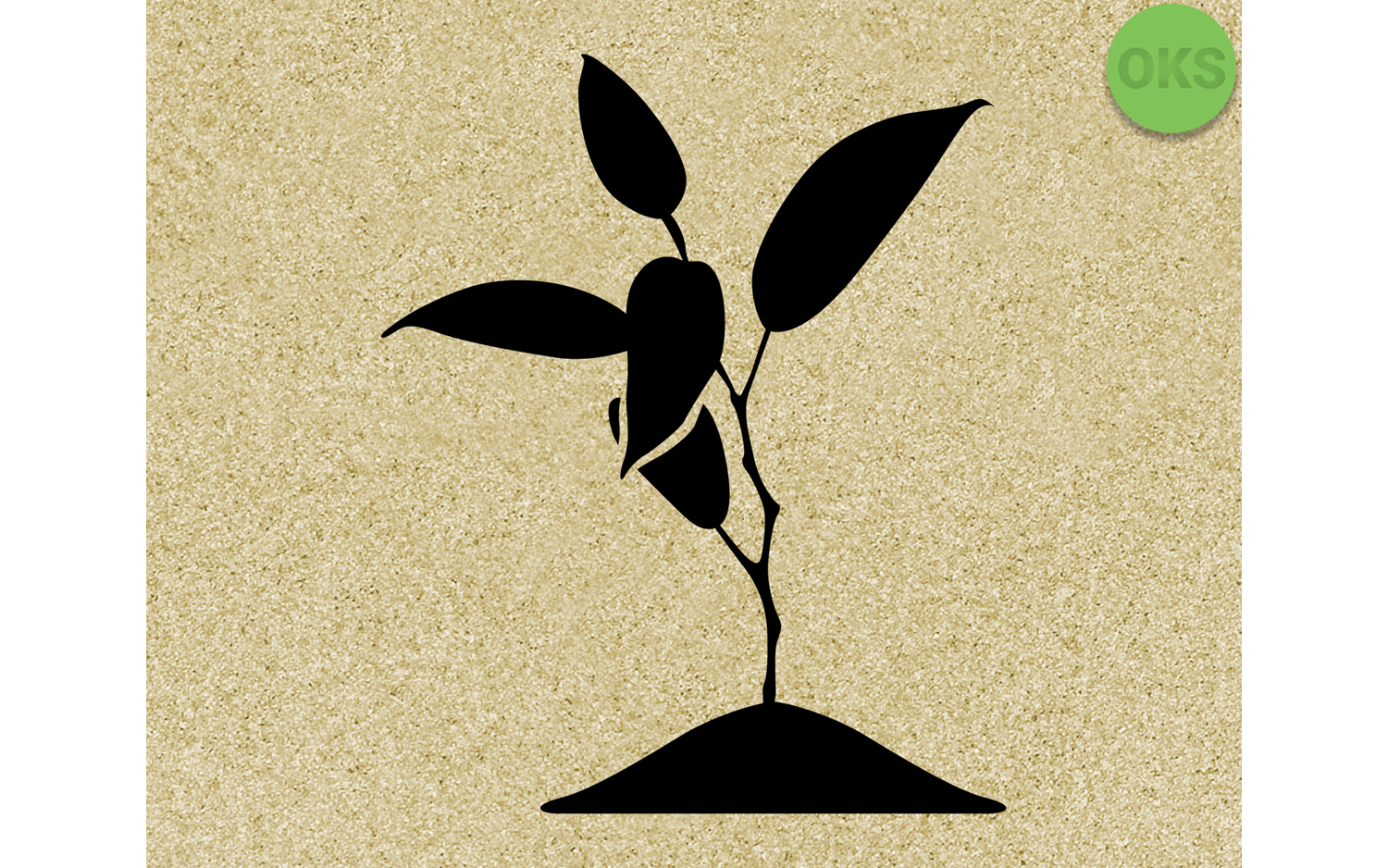 Young Blooming Plant Graphic By Crafteroks Creative Fabrica