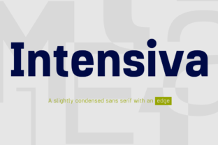 Intensiva Family Font By Graviton Font Foundry