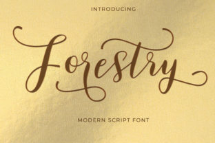Forestry Font By typehill