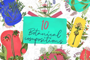 10 Botanical Compositions Graphic By freezerondigital