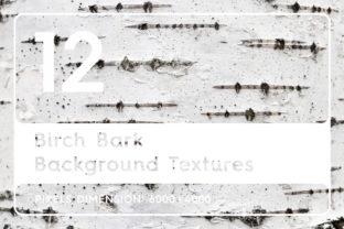 Download Free 12 Birch Bark Background Textures Graphic By Textures Creative for Cricut Explore, Silhouette and other cutting machines.