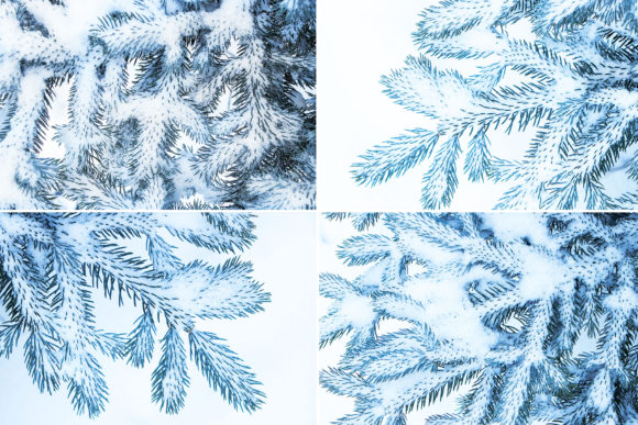 13 Blue Tree Background Textures Graphic Logos By Textures - Image 3
