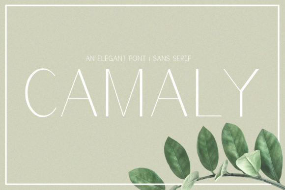 Print on Demand: Camaly Sans Serif Font By White Supply
