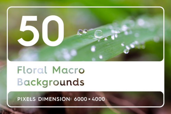 50 Floral Macro Backgrounds Graphic By Textures