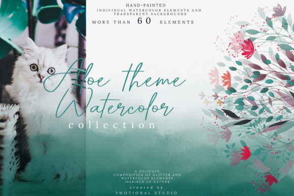 Print on Demand: Aloe Theme Watercolor Collection High Graphic Photos By 3Motional